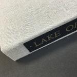 LakeOfDarknessSPINEsm